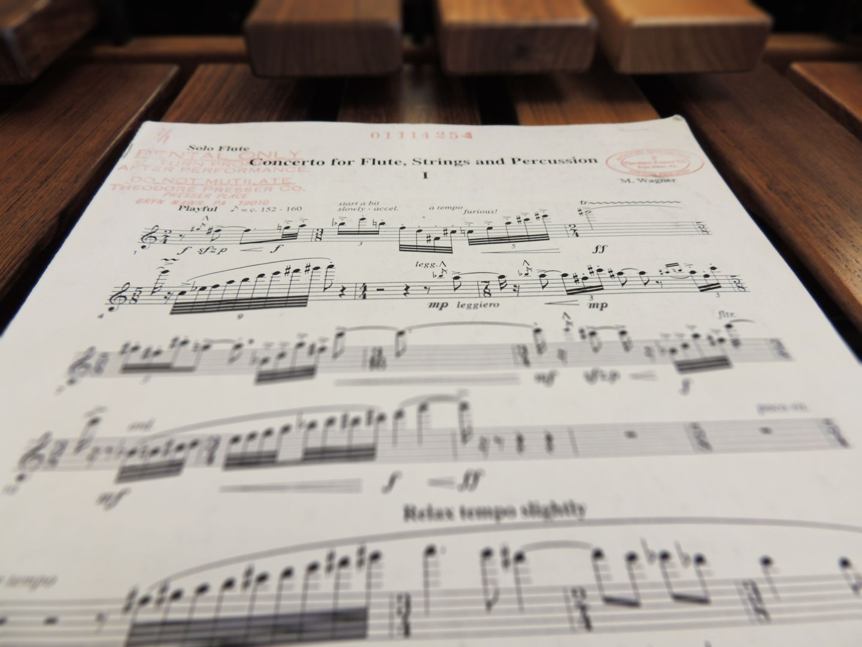 Genesis of a Concerto, part2
