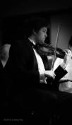 James Reinarz, violin